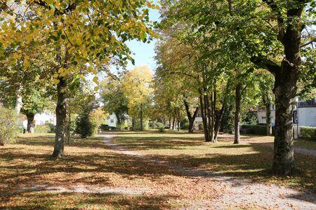 Small landscape park in the center of Engen in southern Germany Foto de archivo