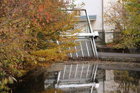 Laubf?nger on a turf in the center of Ellwangen in Baden-Wuerttemberg