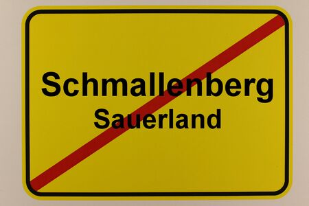 Graphic representation of the city exit sign of the city of Schmallenberg in the Sauerland Standard-Bild