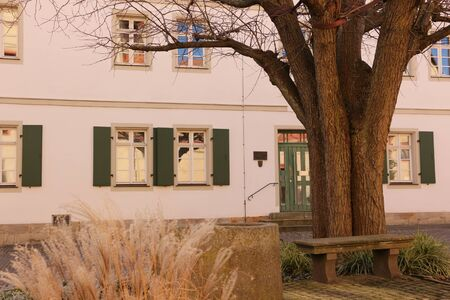 Old tree and historic building in the center of Forchheim