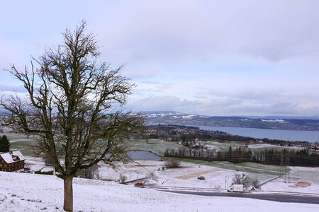 View of Lake Zurich in winter