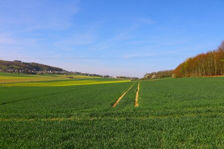 Spring in the fields of Hemer in the Sauerland Standard-Bild