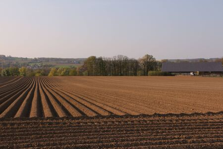 Freshly created potato field in the Ruhr Valley near Menden in the Sauerland Standard-Bild