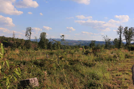 View from Menden to the Sauerland Standard-Bild