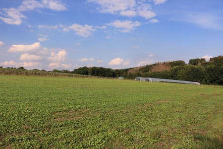 View of the natural landscape near Fröndenberg an Ruhr