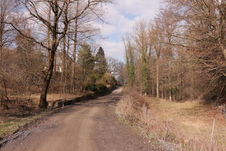 Forest and farm road in the Arnsberg Forest in the Sauerland