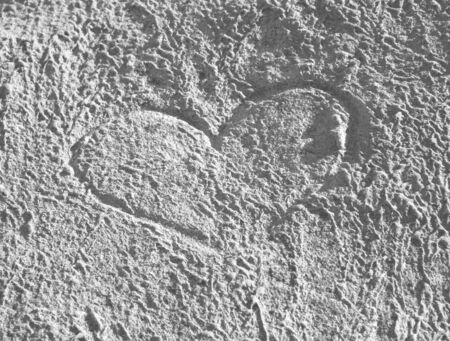 valentine s day beach: heart carved in sandy cliff at the beach