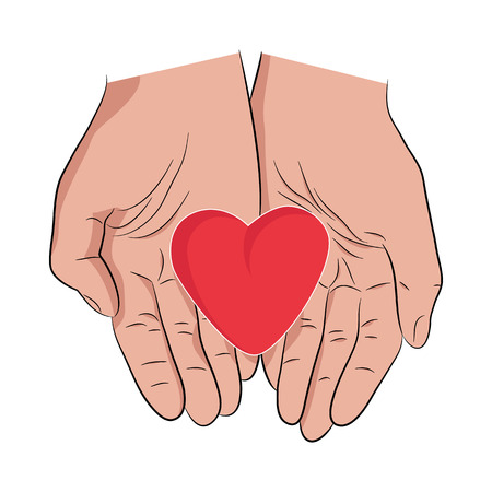 humanity: Female hands holding heart. Heart in mans hands. Showing care, love and humanity. Illustration, vector, isolated on white. Lifecare demonstration with heart in hands. Illustration
