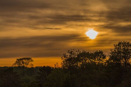 Golden yellow sunset or sunrise with dark black sihlouette trees in Europe