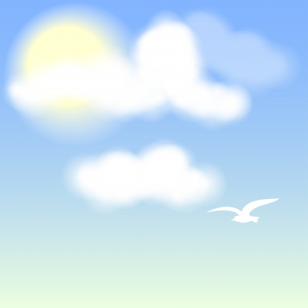 White Bird on blue sky with clouds