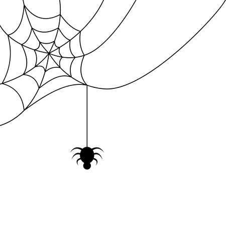 Spider hanging from a cobweb vector illustration