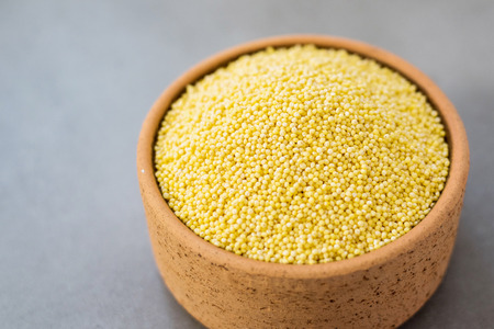 Organic millet seeds in a ceramic bowl, healthy and is gluten-free food