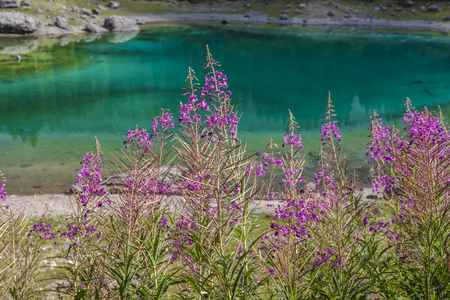 beautiful landscape in the north of the Italian mountains and lake Zdjęcie Seryjne