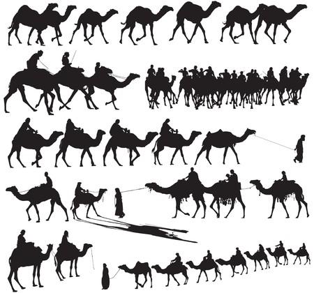 Siluetas de camello y caravanas