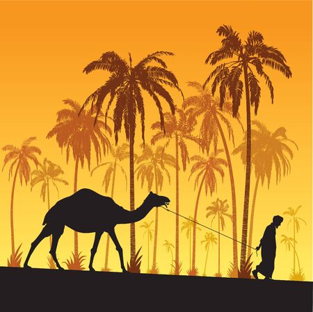 Deserto del Sahara Vettoriali