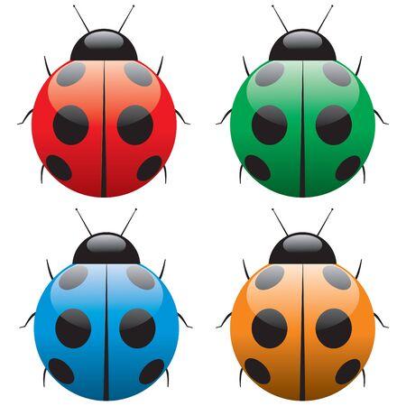 Ladybird Stock Vector - 7931003