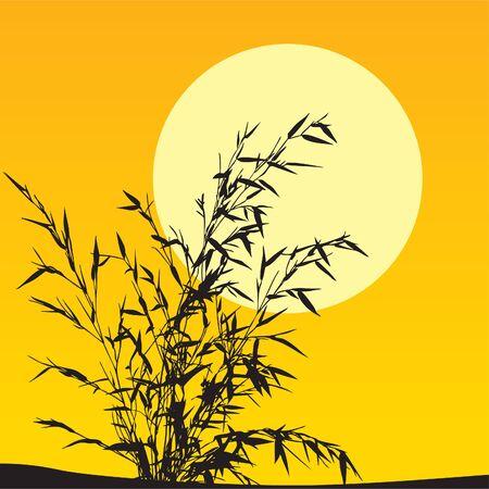 Plant scenic
