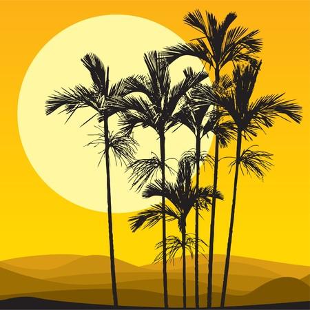 duna: Dunas de arena y palmas  Vectores