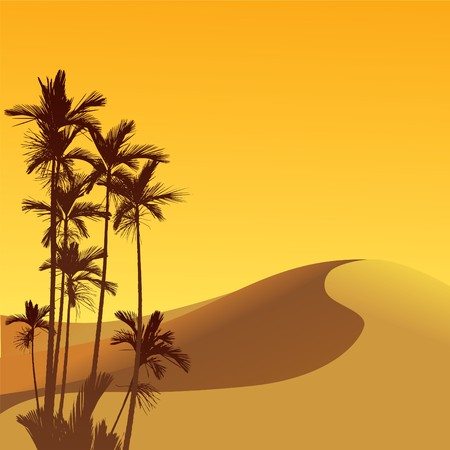 Dunas de arena y palmas