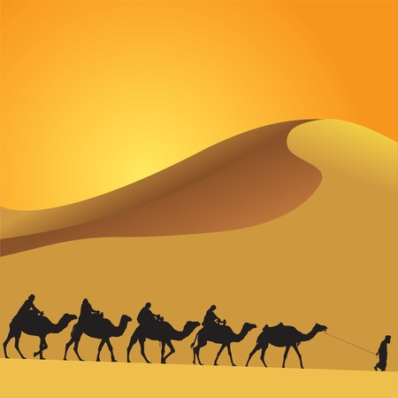 desert sunset: Sahara lifestyle and camel caravan Illustration