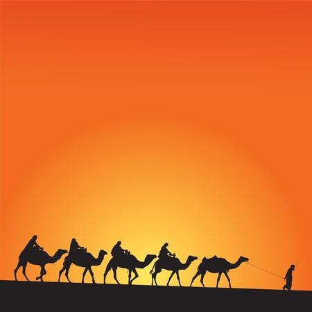the desert: Sahara lifestyle and camel caravan Illustration