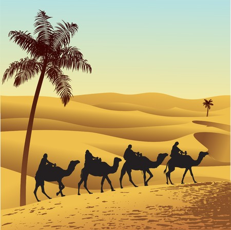 Sahara lifestyle and camel caravan Illustration