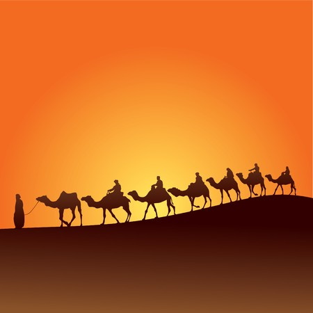Sahara lifestyle and camel caravan Vector