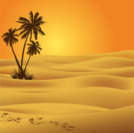 desert sunset: Sahara desert illustration