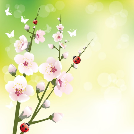 Abstract blossoming background in spring Stock Vector - 9107216
