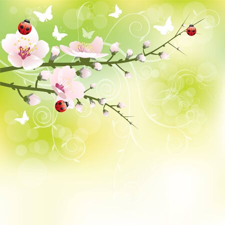 Abstract blossoming background in spring Stock Vector - 9107217