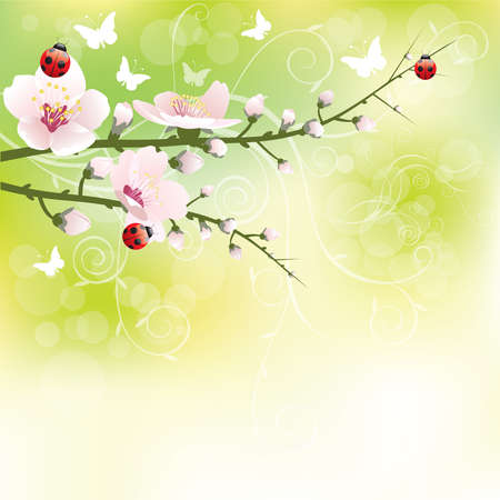 Abstract blossoming background in spring Stock Photo - 9107220
