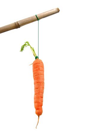 dangling: Carrot on a stick