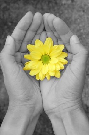 hope: Flower