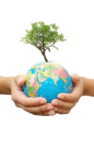 small world: Tree growing from globe Stock Photo