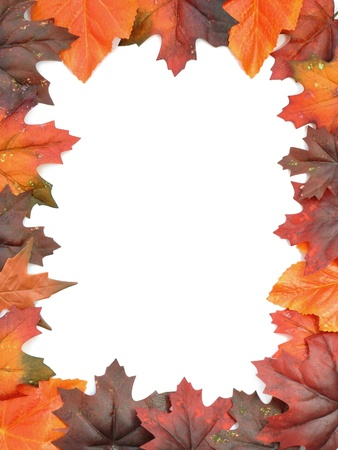 Autumn leaves frame  photo
