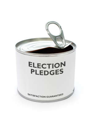 pledge: Election pledges