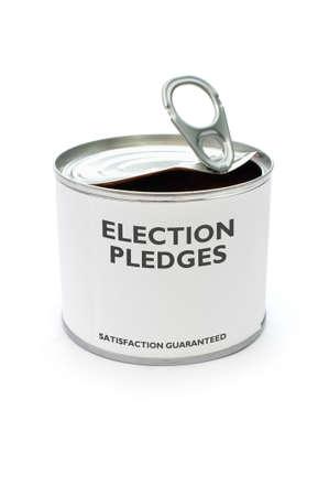 campaign promises: Election pledges