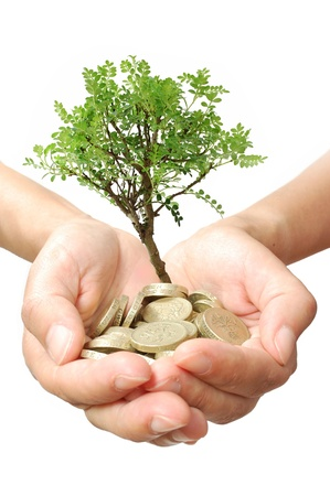 libra esterlina: Crecimiento de los árboles dinero