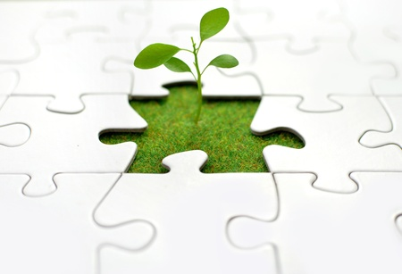 Plant jigsaw  photo