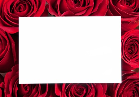 Red roses and card for text photo