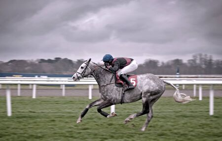 Jockey racing at Kempton Park in the UK  Photo taken on the 17th March 2012
