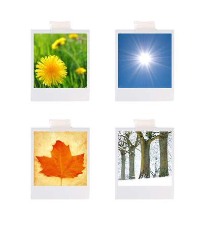 dandelion snow: Four seasons photographs Stock Photo