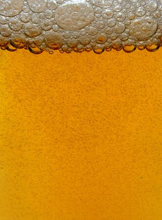 Beer bubbles Stock Photo - 15998059
