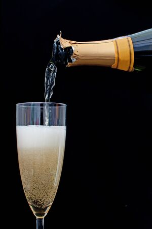 Champagne Stock Photo - 16604193