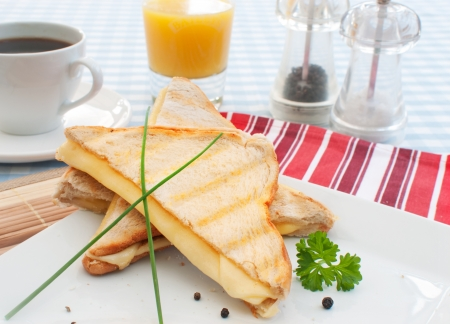 toasted sandwich: Toasted sandwich  Stock Photo