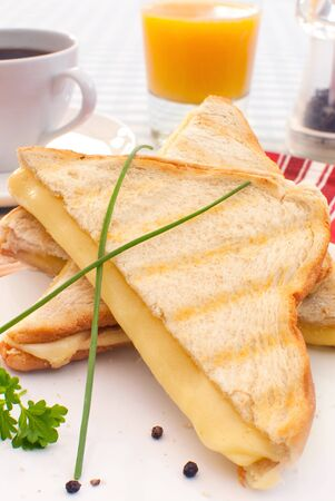 toasted sandwich: Toasted sandwich with melted cheese Stock Photo