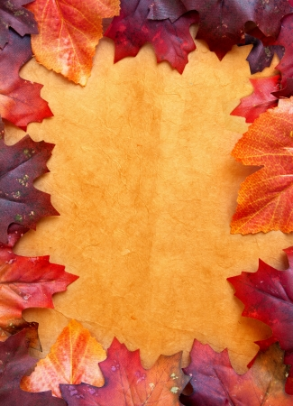 seaonal: Autumn frame  Stock Photo