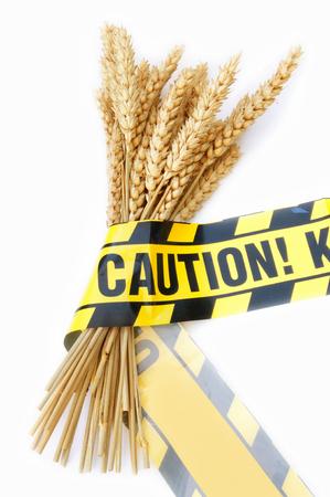 intolerancia: Gluten advertencia libre