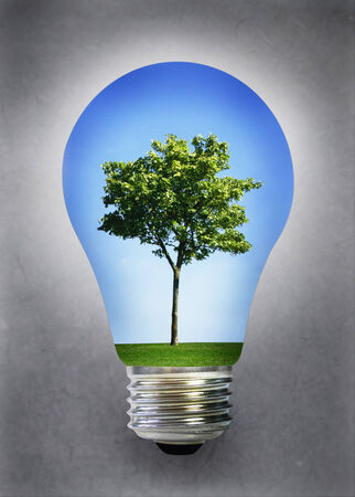 Tree landscape and blue sky inside a light bulb photo