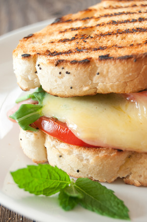 melted cheese: Grilled sandwich close up with melted cheese and tomato